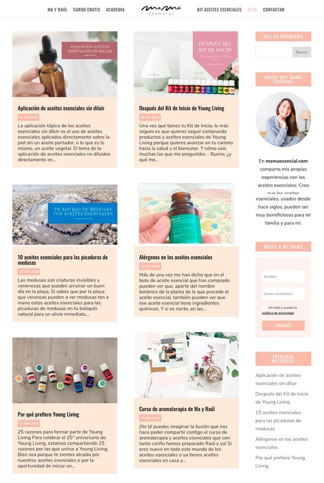 10 formas de organizar las entradas en un WordPress Blog