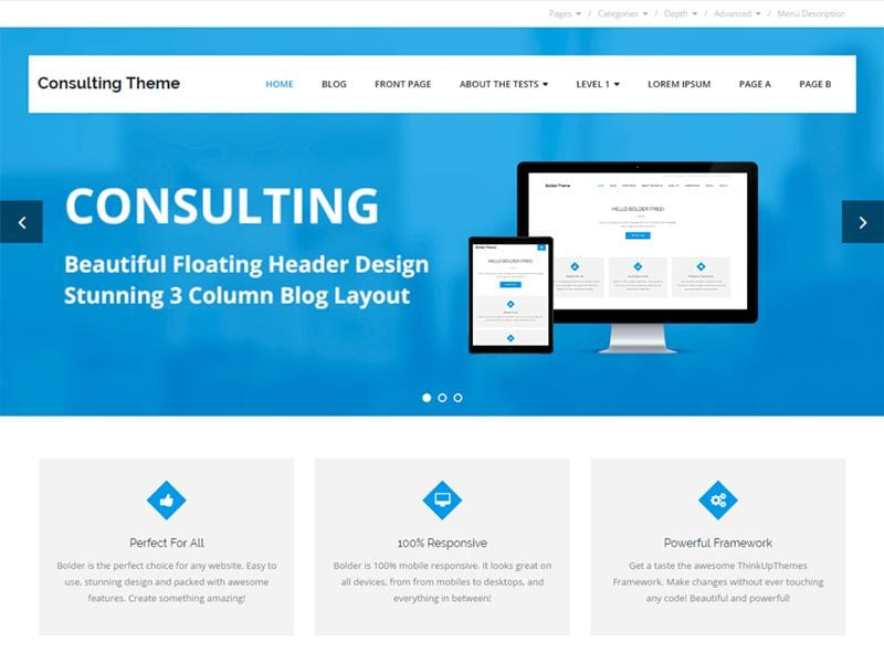 Plantillas WordPress gratis: Consulting
