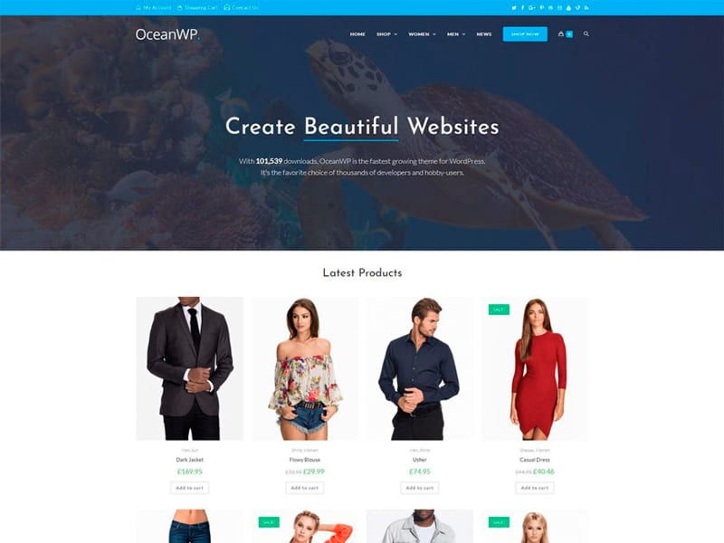 Plantillas WordPress gratis: OceanWP