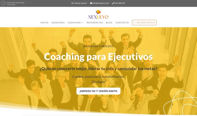 Cómo adaptar el branding de tu marca a tu página web: NEXLEVO